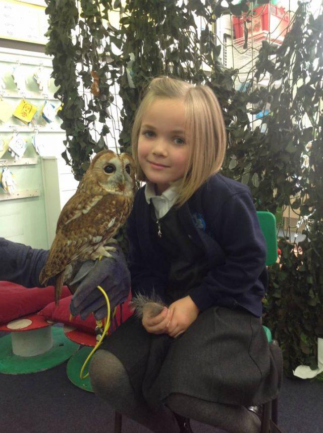 Owl day with Arthur