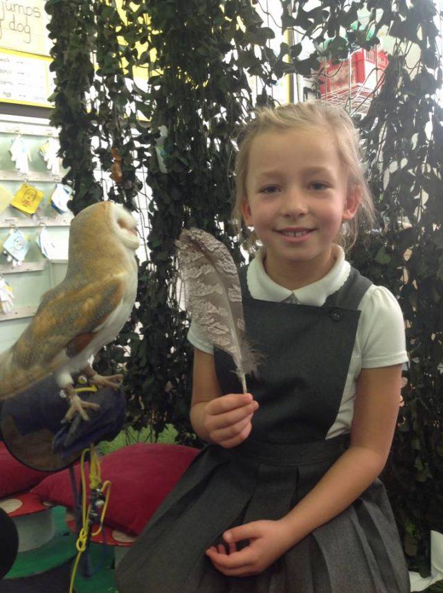 Owl day with Jonny